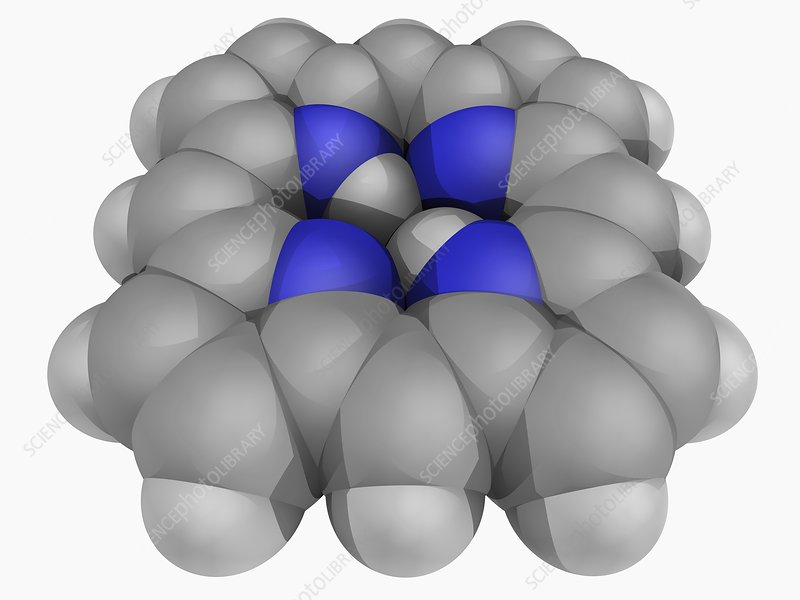 Porphin molecule