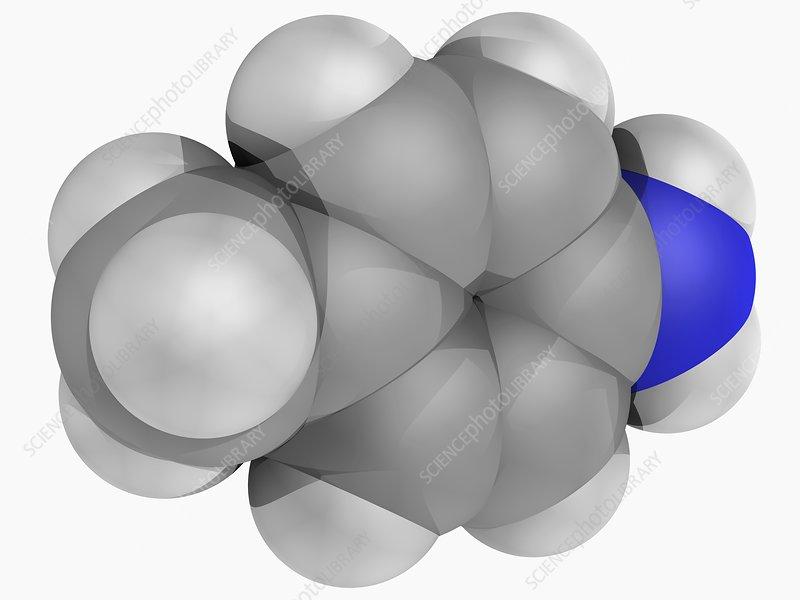 para-Toluidine molecule