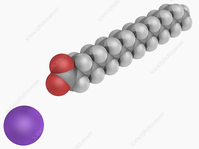 Sodium stearate molecule