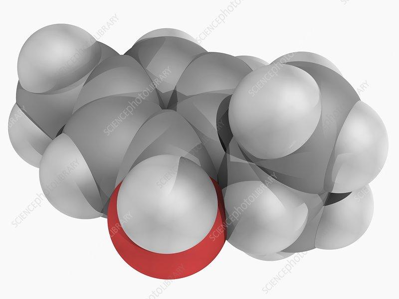 Thymol molecule