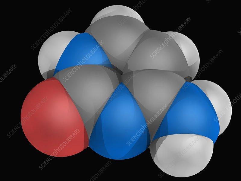 Cytosine molecule