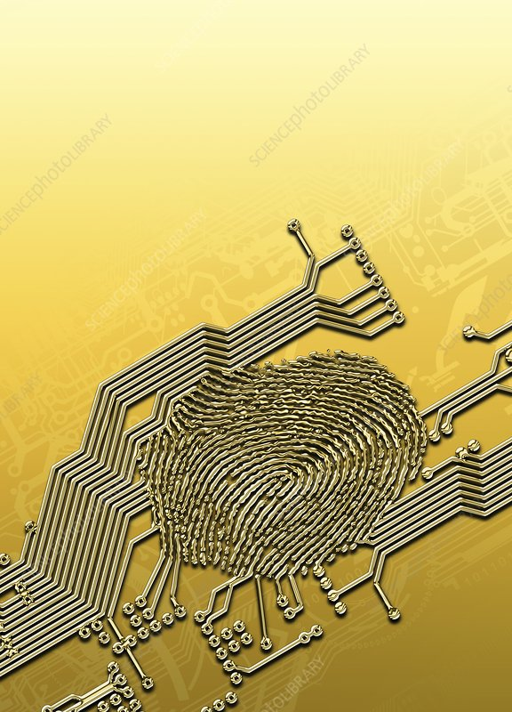 Biometric security, artwork