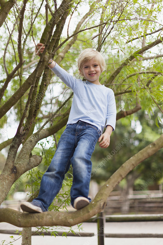 Smiling boy climbing tree