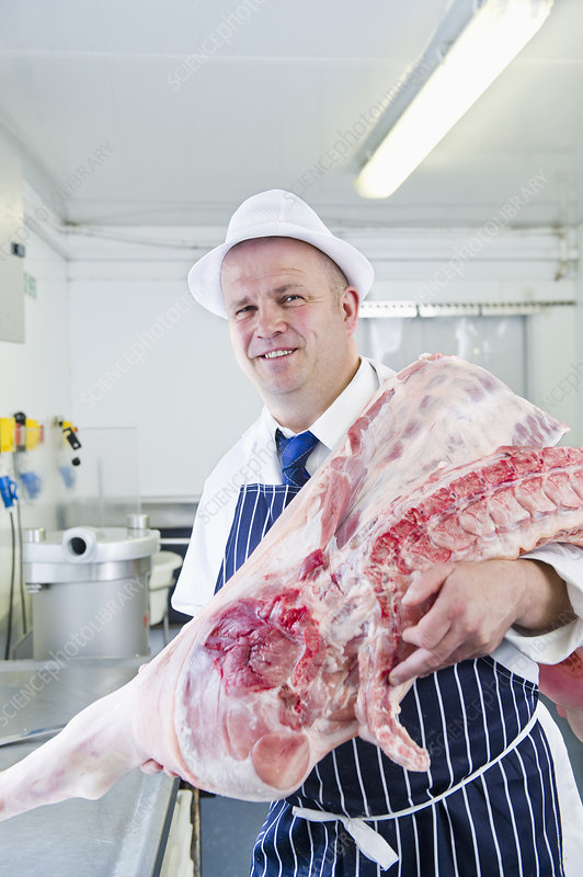 Butcher holding carcass in kitchen