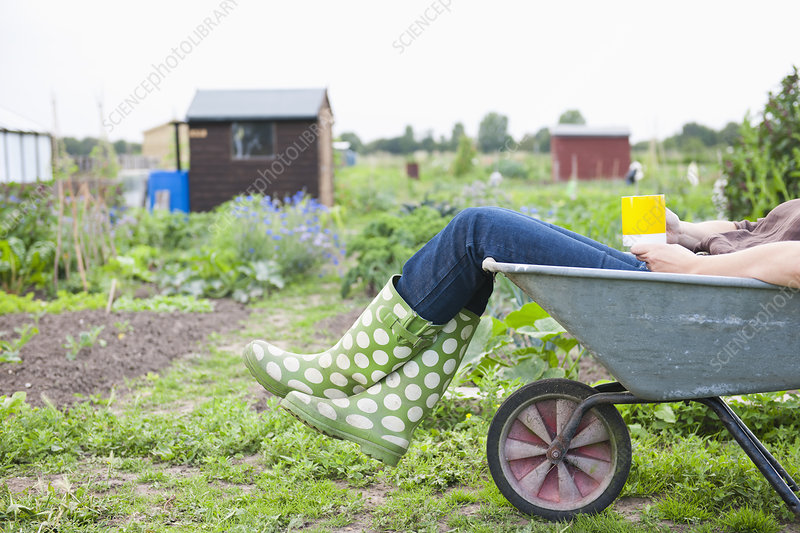 Woman sitting in wheelbarrow in garden