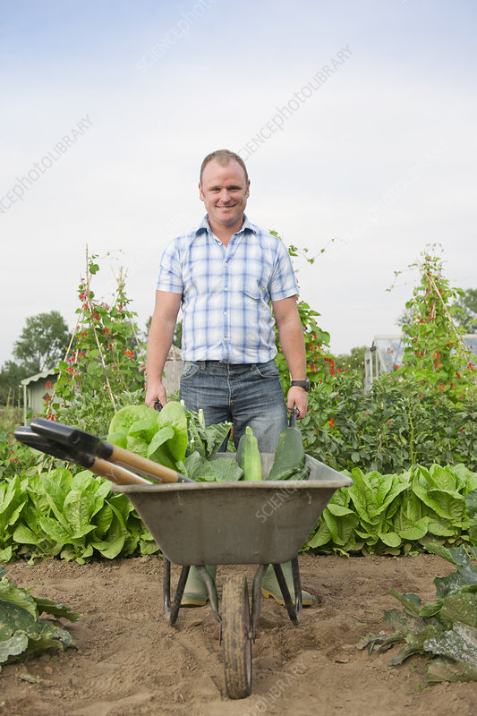 Man pushing wheelbarrow with vegetables