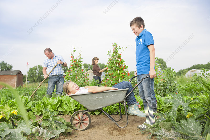 Children playing in wheelbarrow outdoors