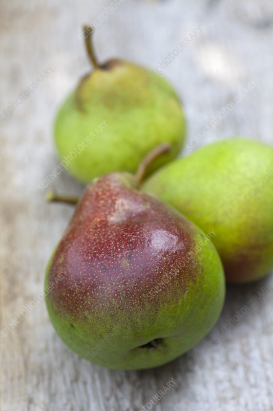 Close up of pears on table