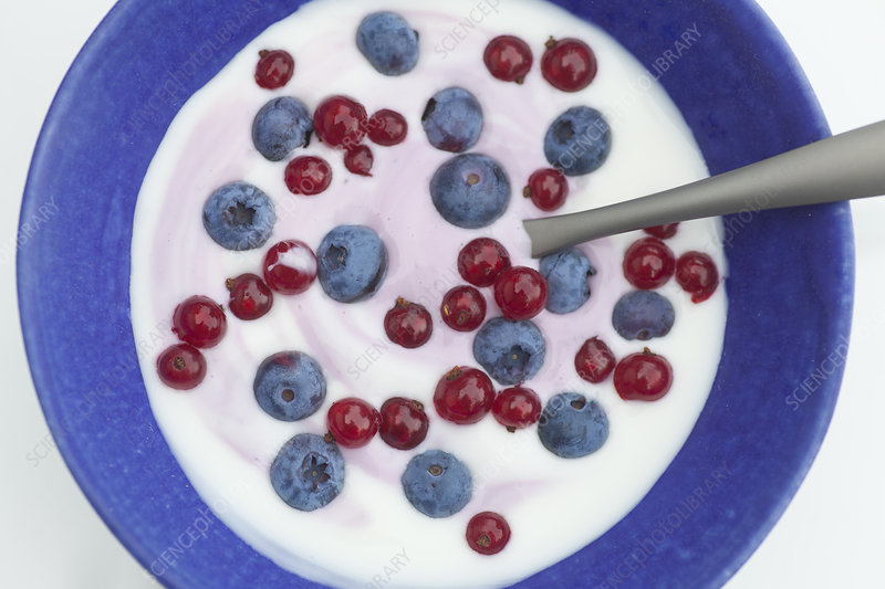 Close up of blueberries and yogurt