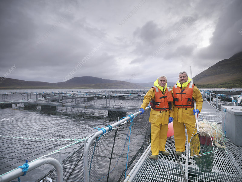 Workers with nets at fish farm
