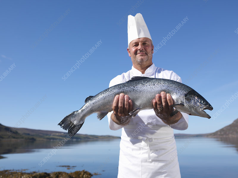 Chef holding salmon by lake