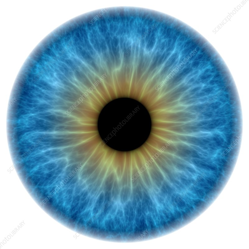 Blue eye, artwork