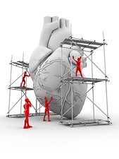 Heart with workers, heart repair