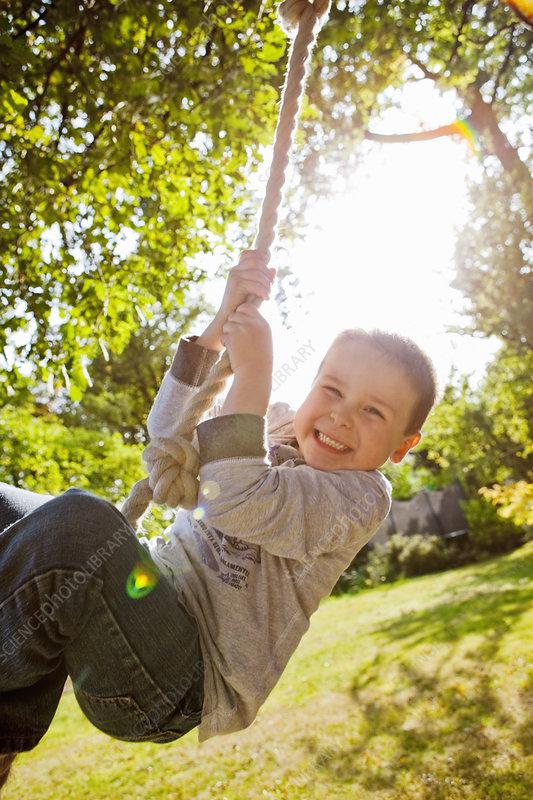 Boy playing on rope swing in backyard - Stock Image - F005 ...