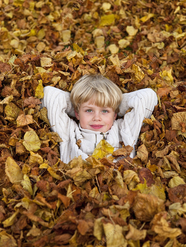 Boy laying in pile of fall leaves