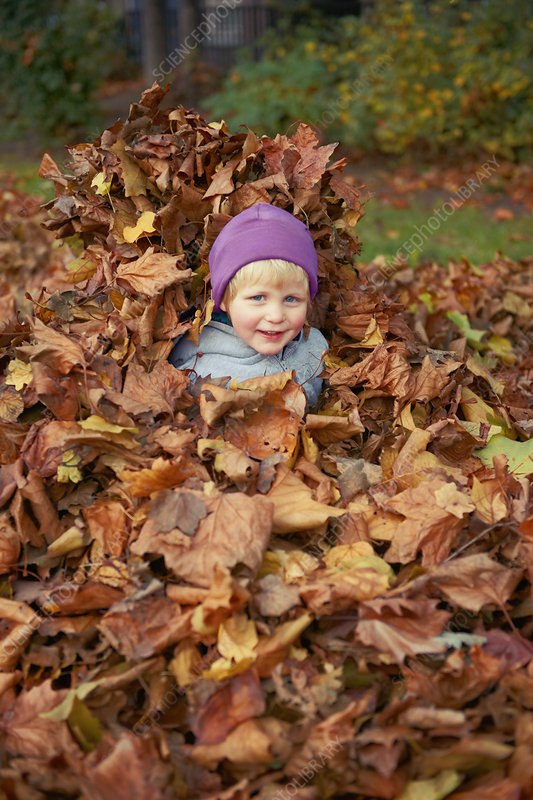 Girl playing in autumn leaves