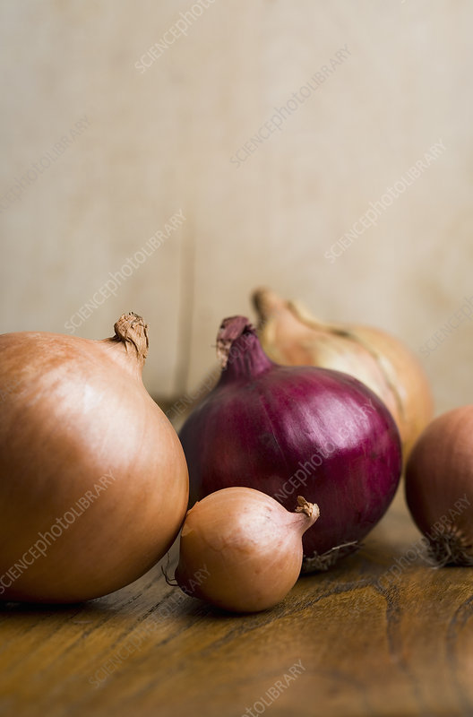 Bunch of mixed onions on table