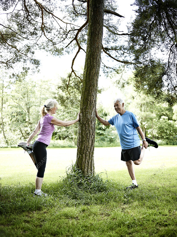 Older couple stretching against tree