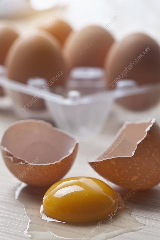 Close up of broken eggshells and yolk