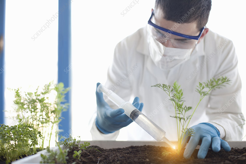 Scientist planting with glowing liquid