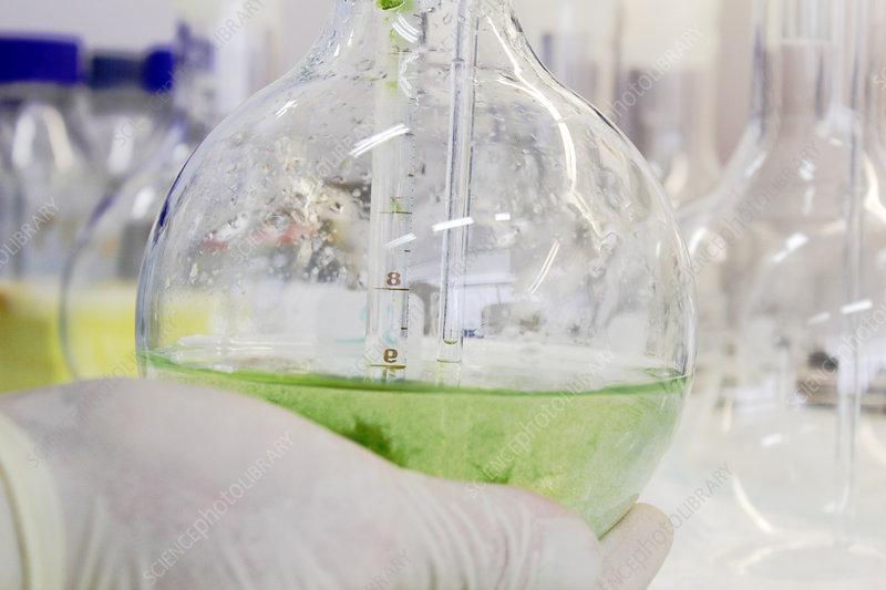 Scientist holding beaker full of liquid