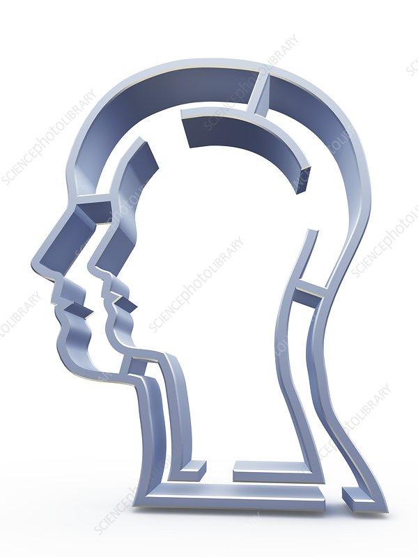Head profile with maze, artwork