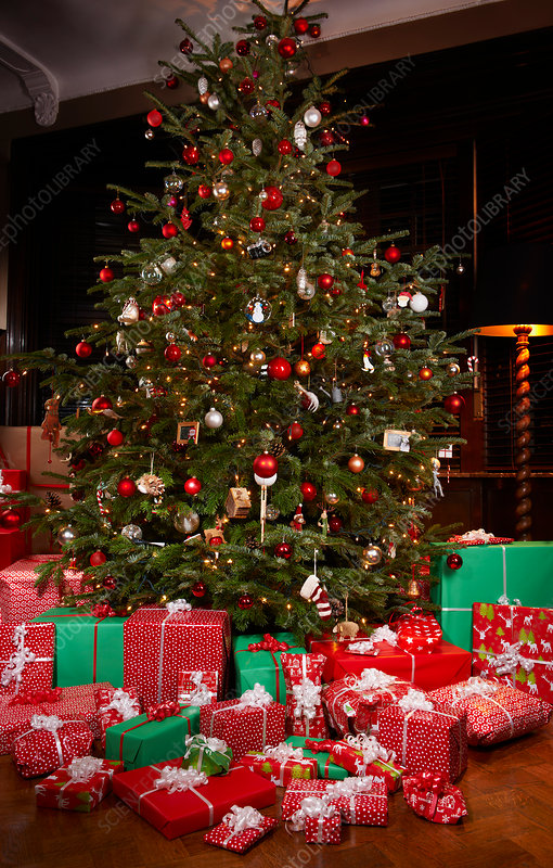 Picture of gifts under christmas tree