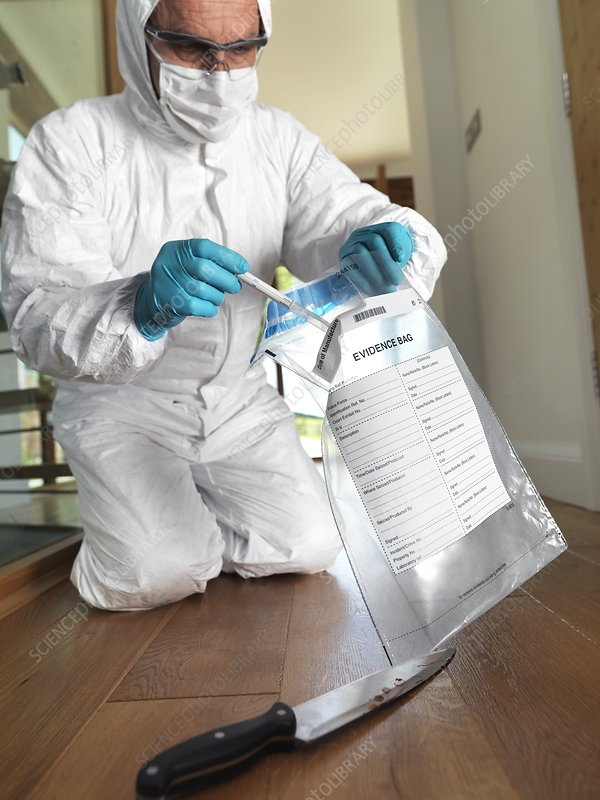Collecting Forensic Evidence Stock Image F005 6160 Science Photo Library
