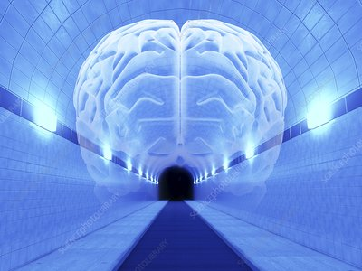 Brain in Tunnel, psychological state