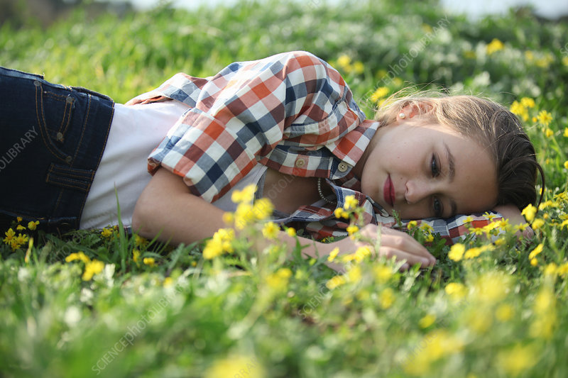 Woman laying in field of flowers - Stock Image - F005/8758 ...