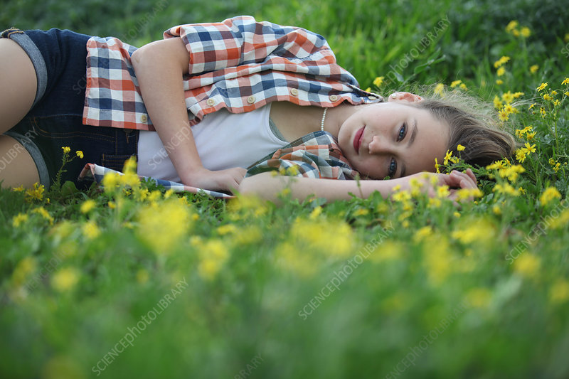 Woman laying in field of flowers - Stock Image - F005/8759 ...