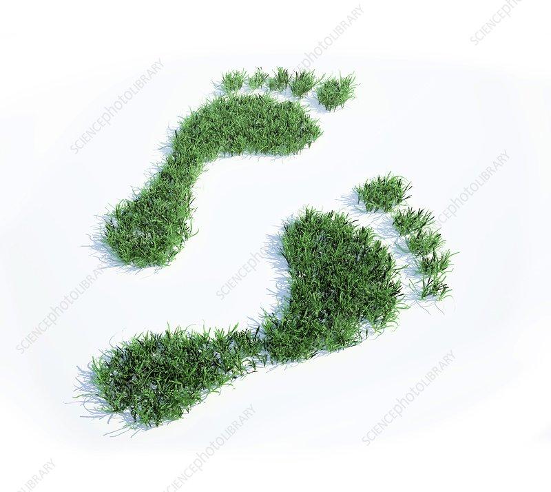 Ecological footprint, conceptual artwork