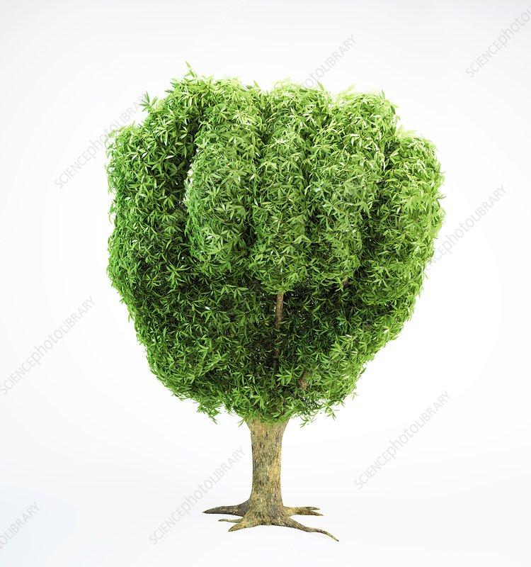 Fist-shaped tree, artwork