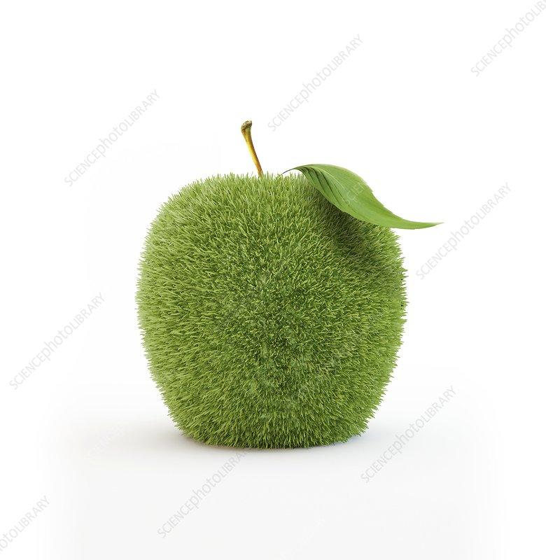 Grass-covered apple, artwork