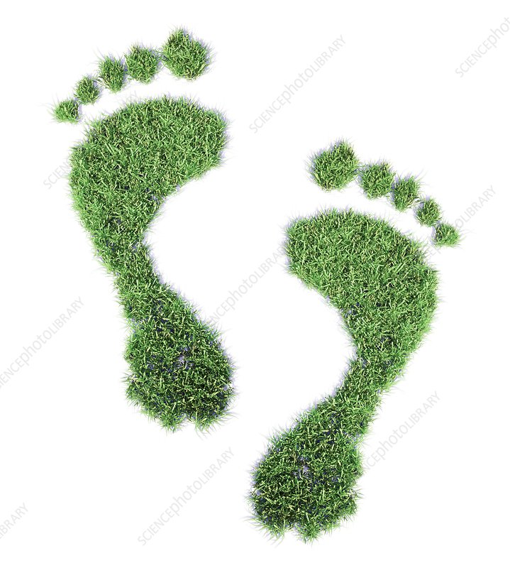 Ecological footprint, conceptual artwork
