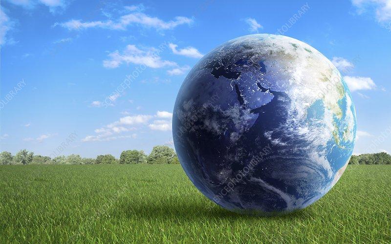 Earth in a field, artwork
