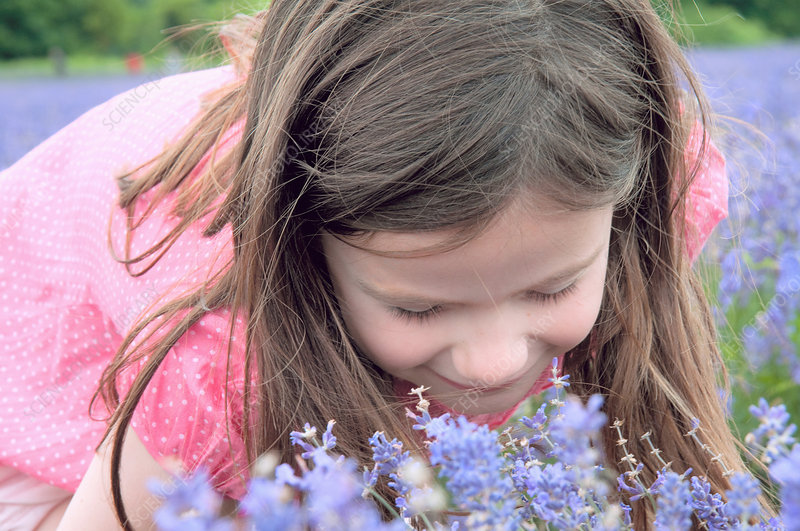 Close up of girl smelling flowers