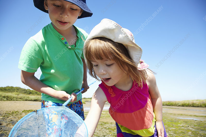 Children fishing with net outdoors