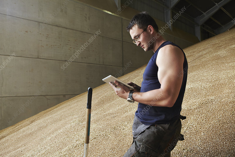 Man using tablet computer in grain