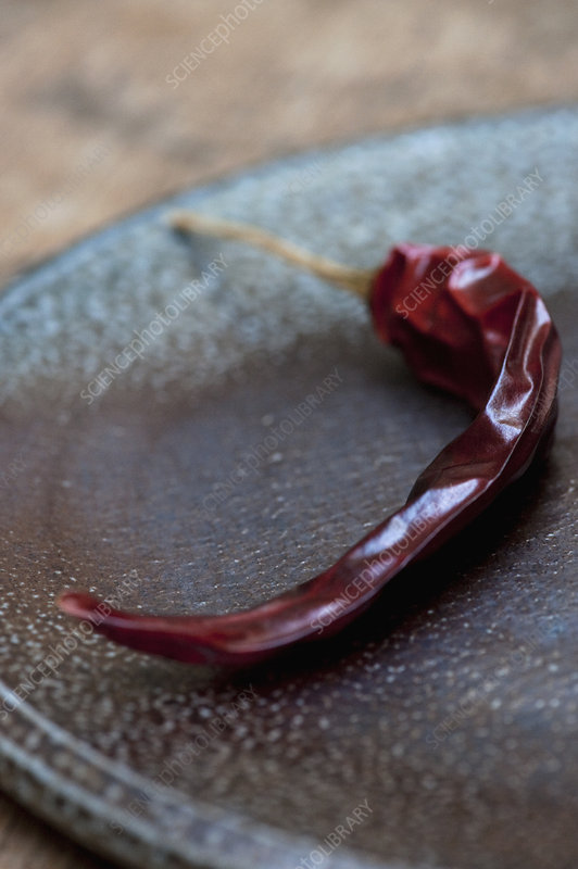 Close up of dried red chili on plate