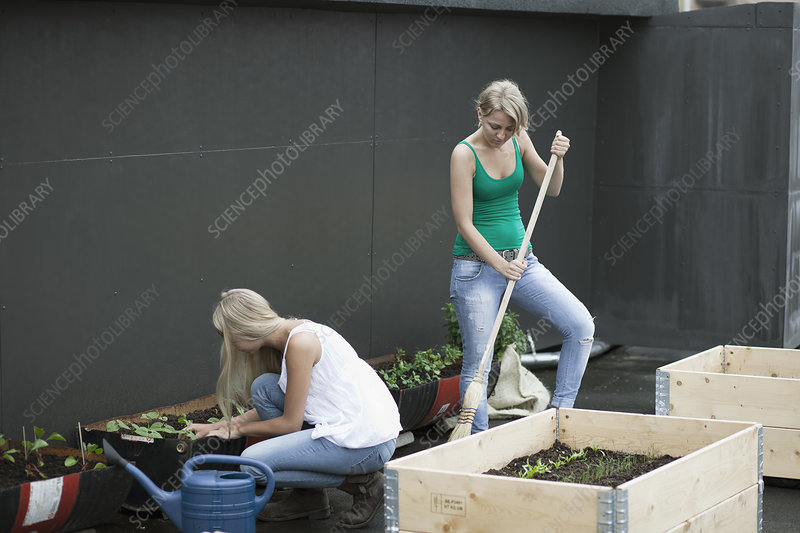 Teenage girls working in modern garden