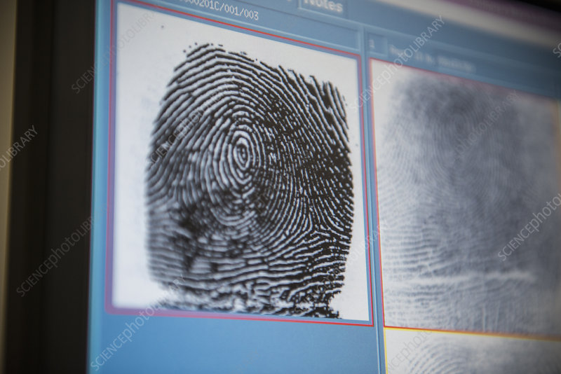 Fingerprints on screen in forensic lab