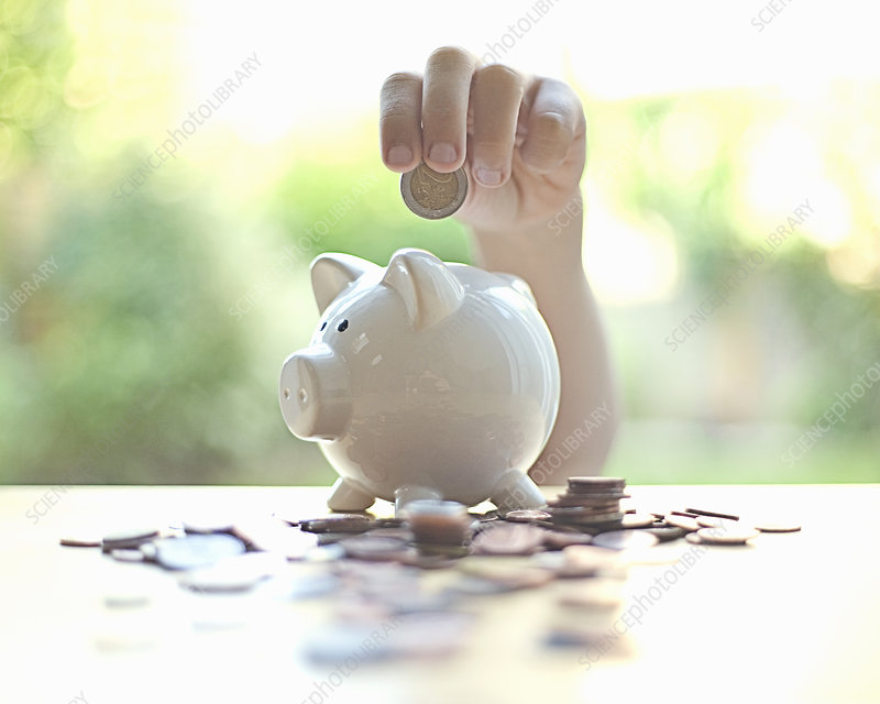 Hand putting coins in piggy bank