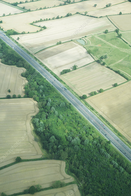 Aerial view of rural fields and road