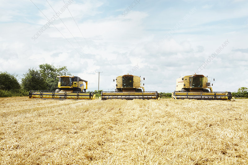 Harvesters working in crop field