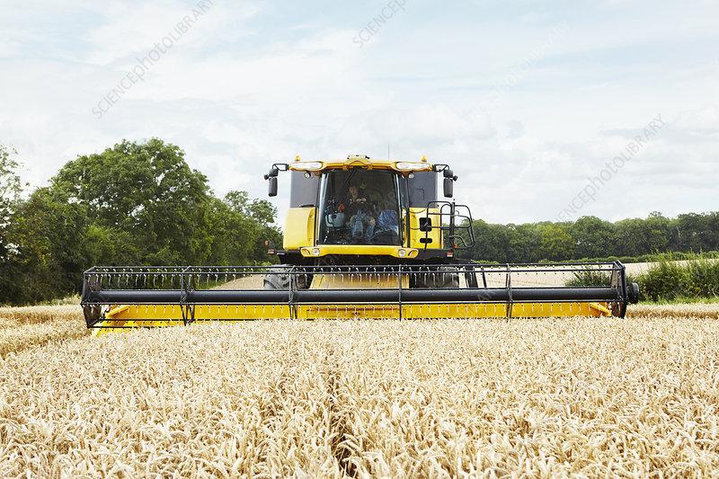 Harvesters working in crop field