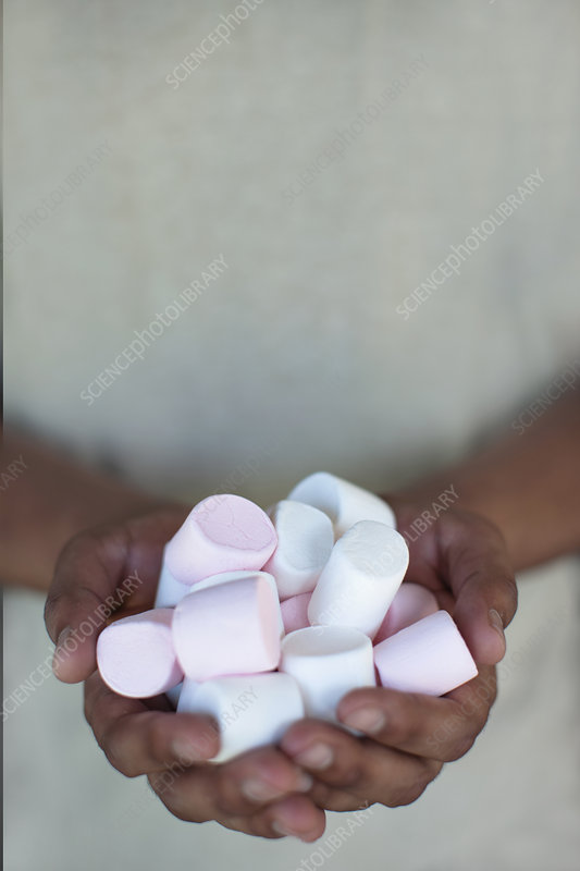 Close up of hands holding marshmallows