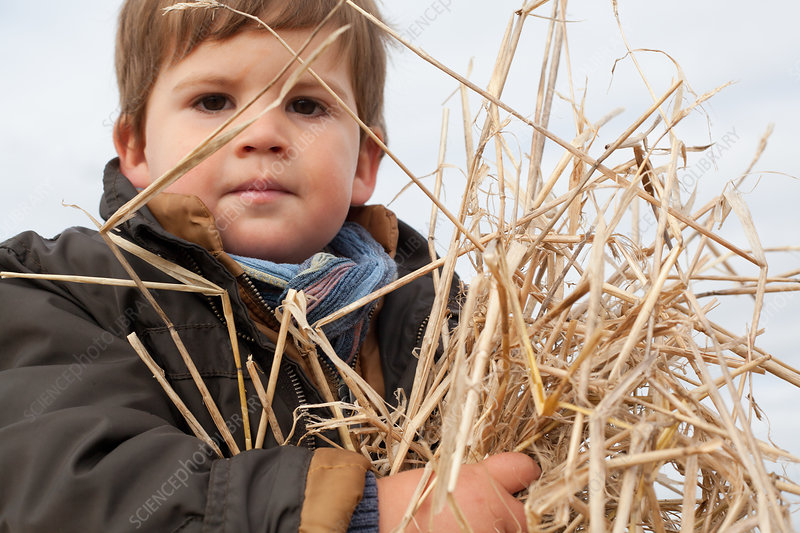 Boy playing with straw outdoors