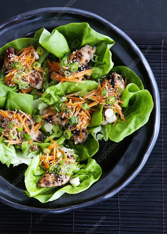 Bowl of salad wraps with lettuce