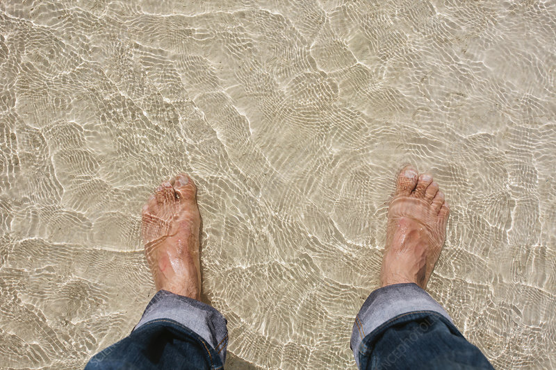 Mans feet in clear water on beach